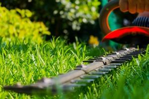 wij-onderhouden-tuinen